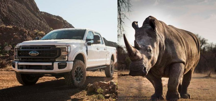 2020 Ford Super Duty F-250 Rhino