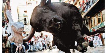 Toro Pamplona